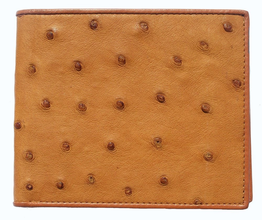 wallet-ostritch-1