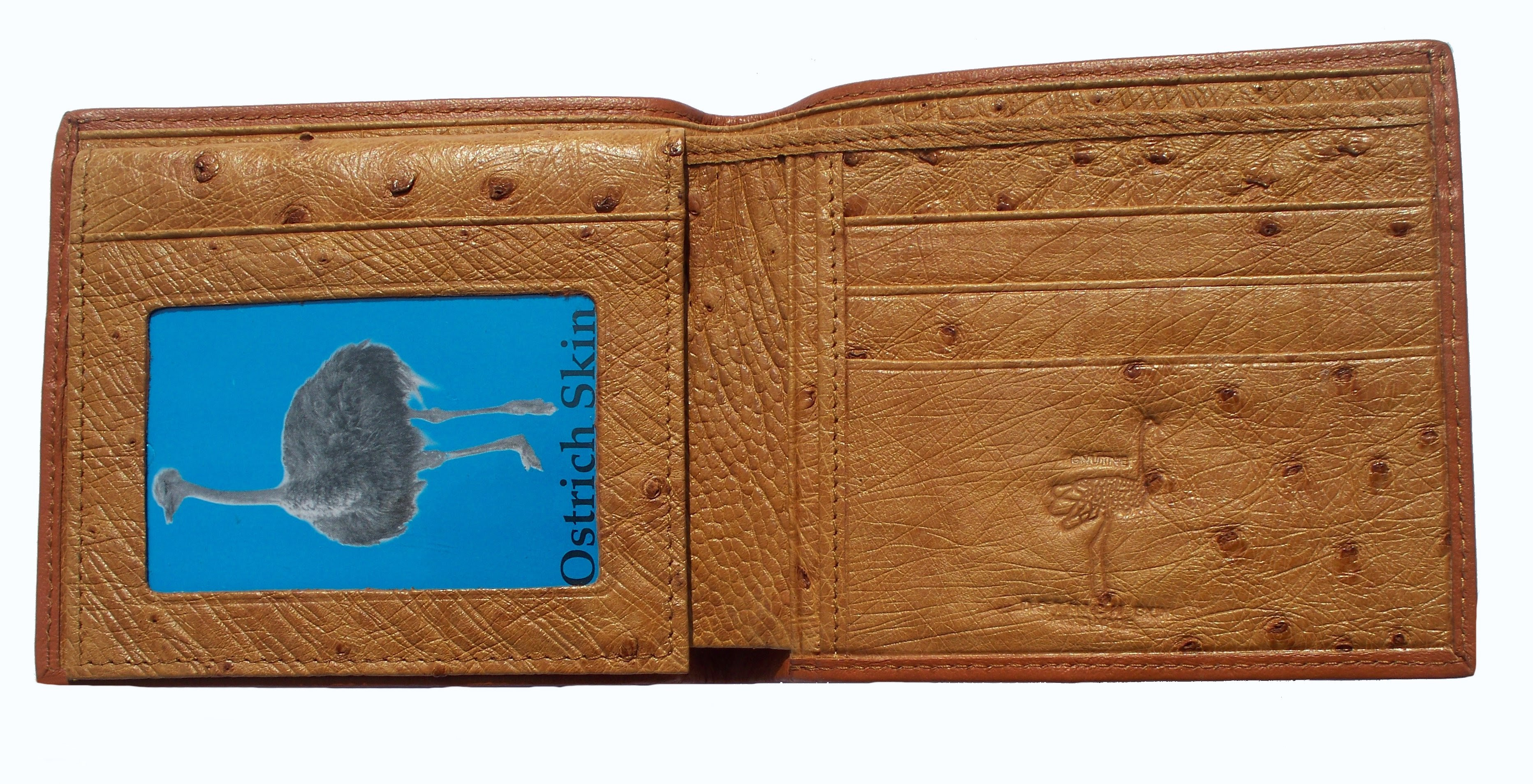 wallet-ostritch-inside